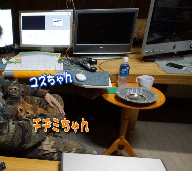 2012.5.12-1.jpg
