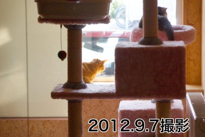 2013.2.13-4.jpg
